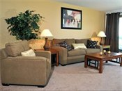 Woodridge Apartments Model Living Room