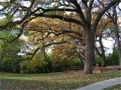Creekwood Estates Nature Area