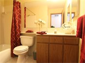 Fox Forest Townhomes Model Bathroom