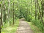 Park Trails Path through nature preserve