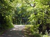 Carver Lake Townhomes Walking Trail