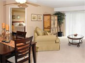 Stonehill Apartments Model Living Room