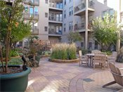 Uptown Lake Apartments Courtyard